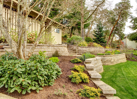 Retaining Wall - Landscape